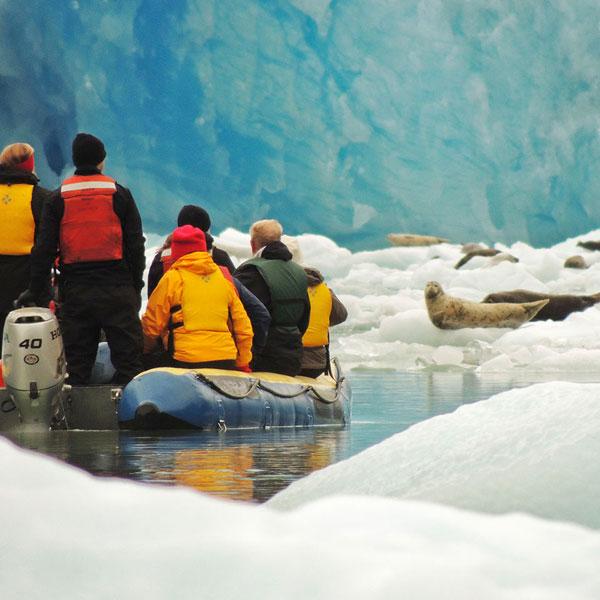 Islands, Whales, Glaciers